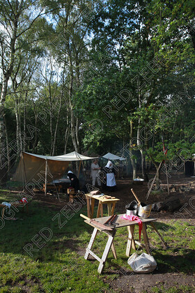 RedZebraSf12 017 