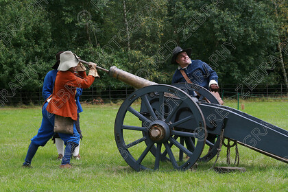 RZBP11 1294 
