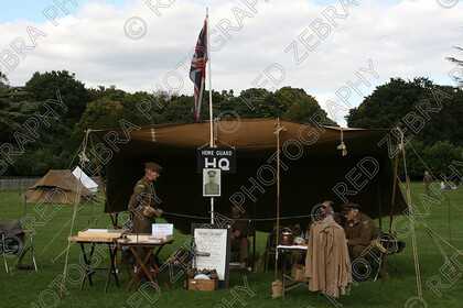 RedZebraRHF2015-0522 