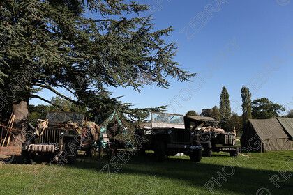 RedZebraRHF2015-0273 